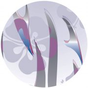skiblume2