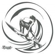 surf_circle2
