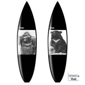 Surf_classic_bear_orang