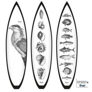 Surf_classic_bird_fish