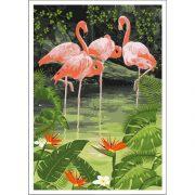 flamingo_tropical_A1_2